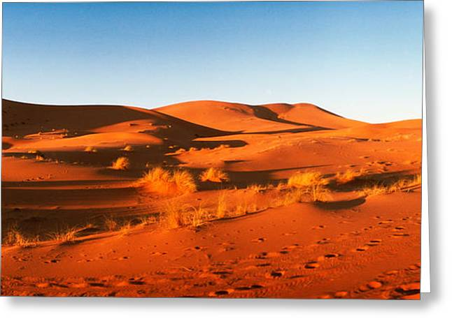 Sahara Sunlight Greeting Cards - Desert At Sunrise, Sahara Desert Greeting Card by Panoramic Images