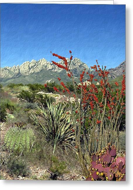 Desert Bloom Greeting Card by Kurt Van Wagner