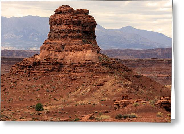 Canyon Country Greeting Cards - Desert Butte - Utah Greeting Card by Aidan Moran