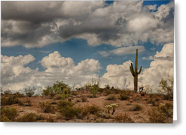 Monsoon Clouds Greeting Cards - Desert Clouds  Greeting Card by Saija  Lehtonen