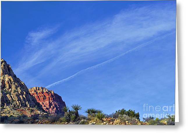 Red Rock Canyon Greeting Cards - Desert Contrast Greeting Card by C Sakura