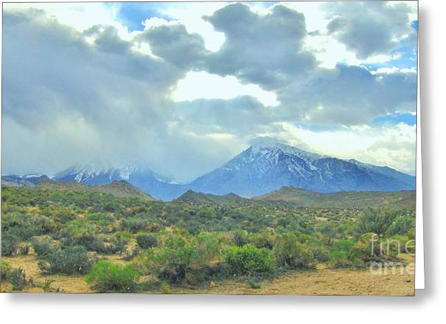 Snow Capped Greeting Cards - Desert Cool Greeting Card by Marilyn Diaz