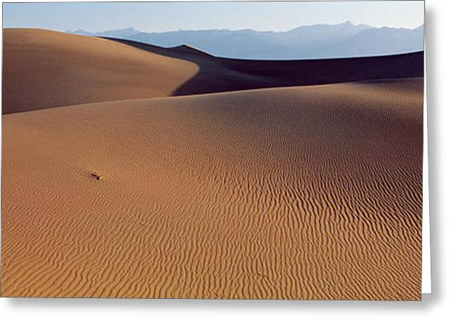 Sand Patterns Greeting Cards - Desert Death Valley Ca Usa Greeting Card by Panoramic Images