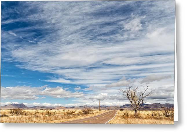 Photorealism Greeting Cards - Desert Grassland Greeting Card by Kathleen Bishop
