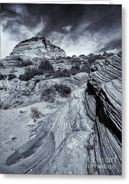 Coyote Buttes Greeting Cards - Desert Groove Greeting Card by Mike  Dawson