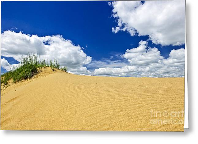 Sand Dunes Greeting Cards - Desert landscape in Manitoba Greeting Card by Elena Elisseeva