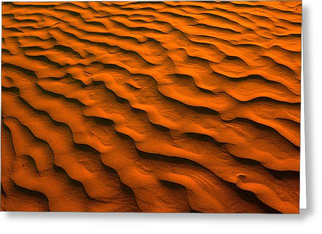 Desert Photography Greeting Cards - Desert-like Conditions In The Fragile Greeting Card by Greg Huszar Photography