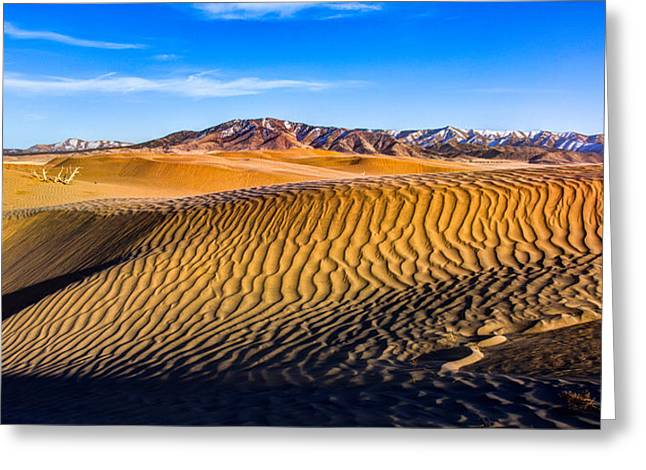 Recreation Greeting Cards - Desert Lines Greeting Card by Chad Dutson
