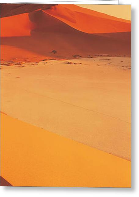 Desert Namibia Greeting Card by Panoramic Images