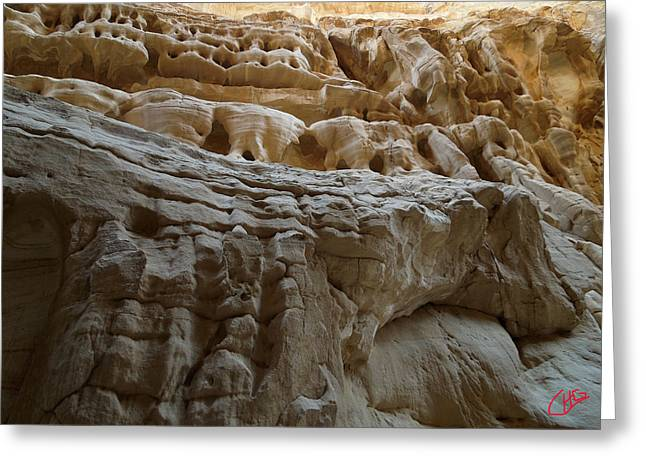 Sinai Mountain Greeting Cards - Desert natural Formations Sinay Egypt Greeting Card by Colette V Hera  Guggenheim