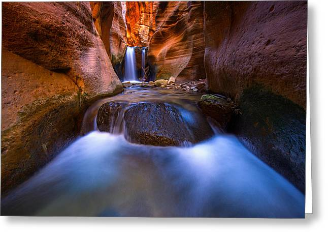 Utah Slot Canyon Greeting Cards - Desert Oasis Greeting Card by Joseph Rossbach
