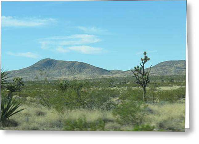 Kkphoto1 Greeting Cards - Desert Panoramic Greeting Card by Kay Novy