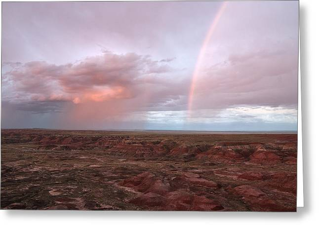 Petrified Forest Arizona Greeting Cards - Desert Rain Greeting Card by Melany Sarafis
