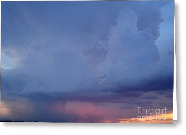 Desert Rainstorm 3 Greeting Card by Kerri Mortenson