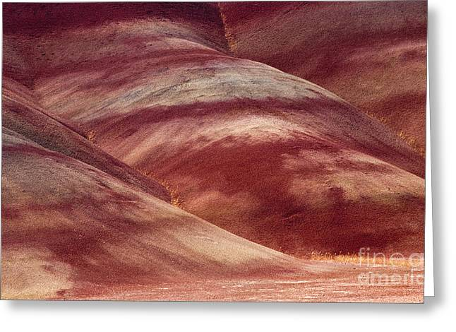 Foothill Greeting Cards - Desert Red Greeting Card by Mike  Dawson