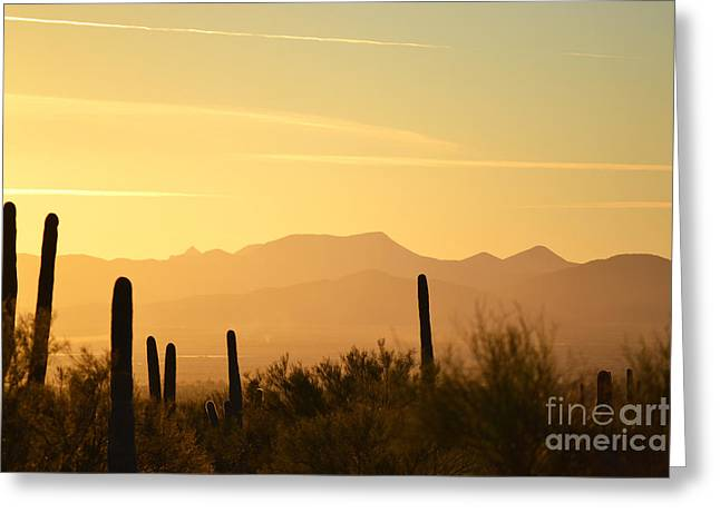 Sunset Greeting Cards Greeting Cards - Desert Saguaro Mountain Sunset Greeting Card by Andrea Hazel Ihlefeld