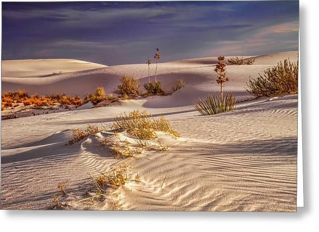 Sand Pattern Greeting Cards - Desert Shadows Greeting Card by Tom Weisbrook
