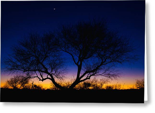 Scenery Greeting Cards - Desert Silhouette Greeting Card by Chad Dutson