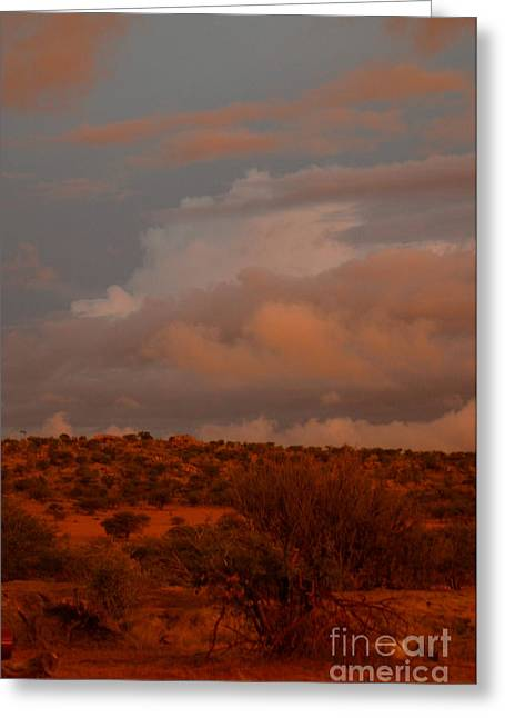 Red Photographs Greeting Cards - Desert Sunset Greeting Card by Alison Kennedy-Benson