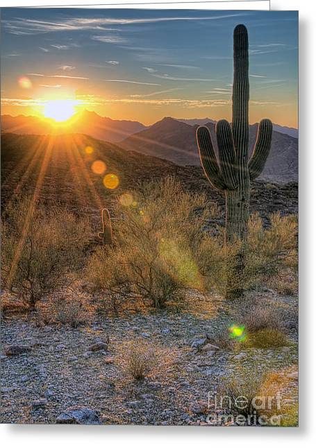 Desert Sunset Greeting Card by Eddie Yerkish