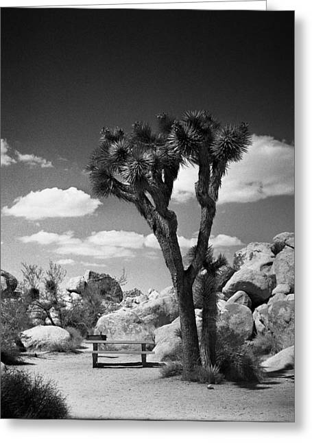 Square Format Greeting Cards - Desert Table Greeting Card by Alex Snay
