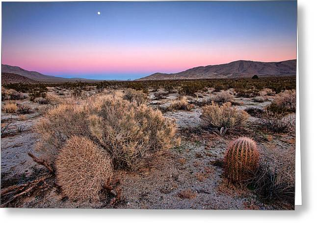 Desert Greeting Cards - Desert Twilight Greeting Card by Peter Tellone