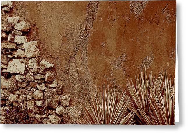 Redish Greeting Cards - Desert Wall And Garden Greeting Card by Sherri  Of Palm Springs