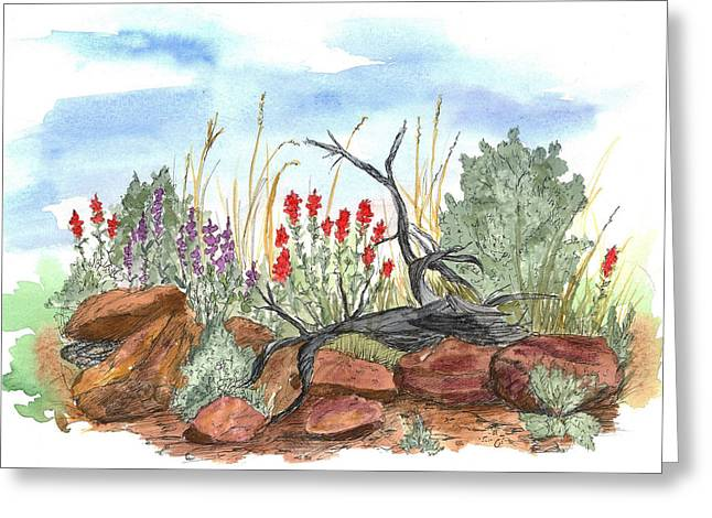 Watercolor With Pen Mixed Media Greeting Cards - Desert Wildflowers Greeting Card by Cathie Richardson