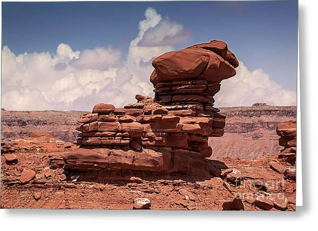 Geology Photographs Greeting Cards - Desert Zen Greeting Card by Janice Rae Pariza