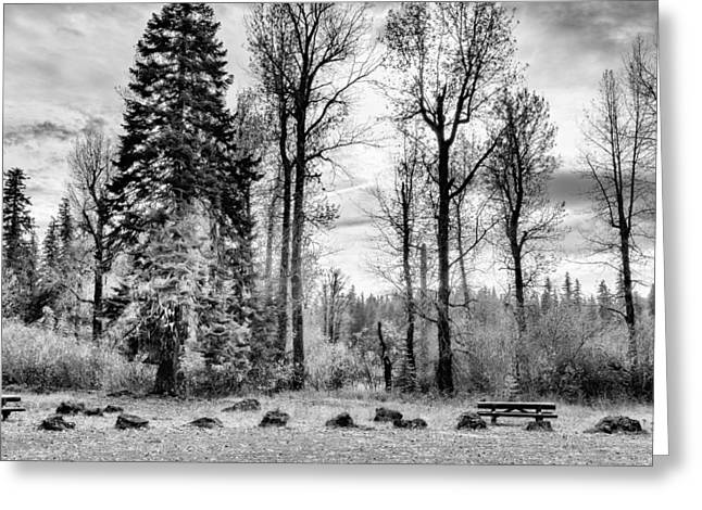 Historic Site Greeting Cards - Deserted BW - Oregon Greeting Card by Belinda Greb