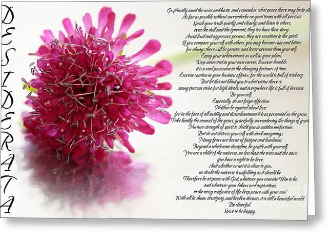 Desiderata 2 Greeting Card by Wendy Wilton