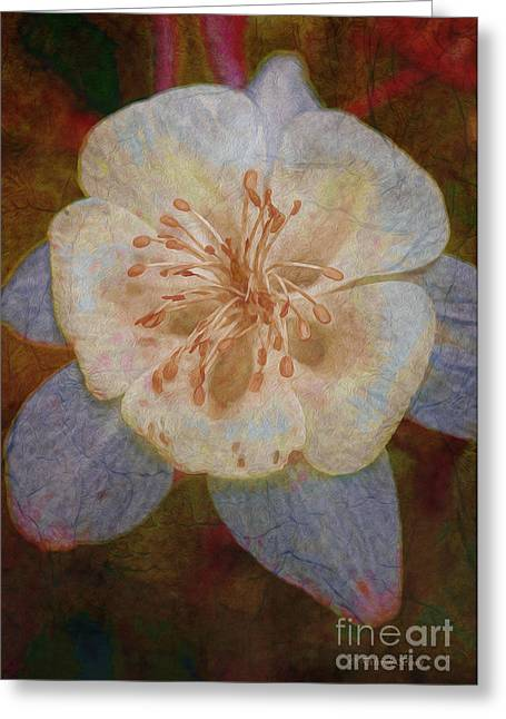 Topaz Greeting Cards - Designer Floral Greeting Card by Deborah Benoit