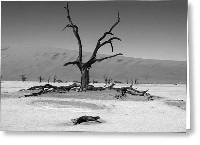 Desolation Row Greeting Card by Aidan Moran