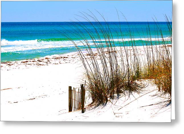 Destin Florida Greeting Card by Monique Wegmueller