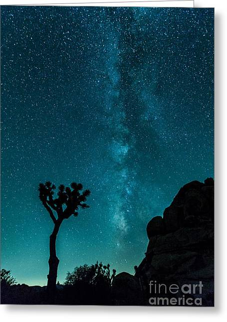 Night Photography Workshop Greeting Cards - Destination Unknown Greeting Card by Nicholas  Pappagallo Jr