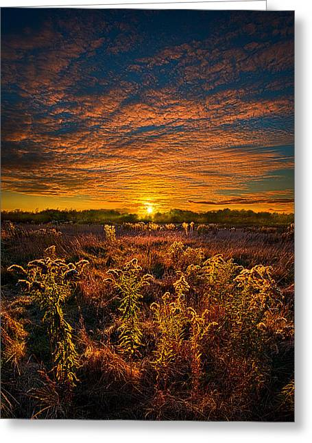 Destination Unknown Greeting Card by Phil Koch