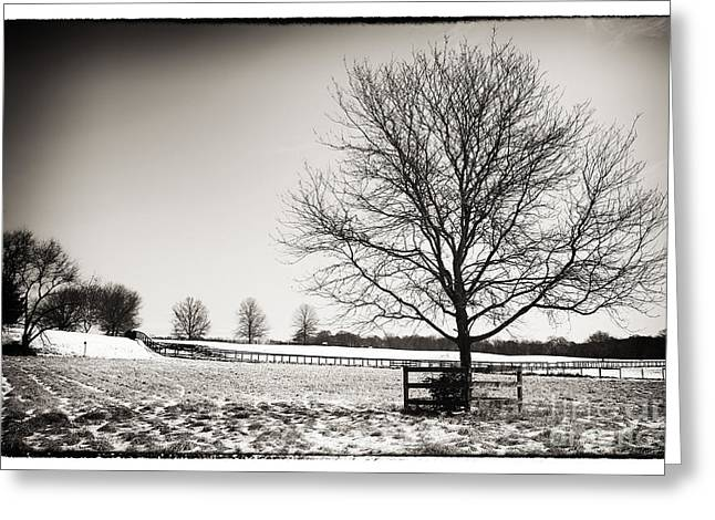 Lack And White Greeting Cards - Destitute Greeting Card by John Rizzuto