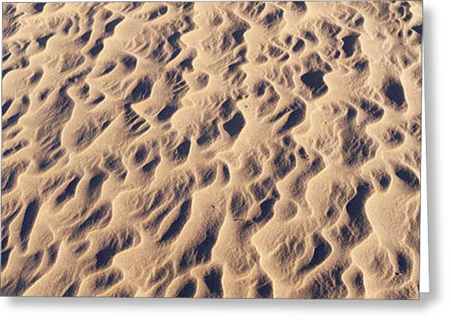 Geographical Locations Greeting Cards - Detail Of Sand Dunes At Anza Borrego Greeting Card by Panoramic Images