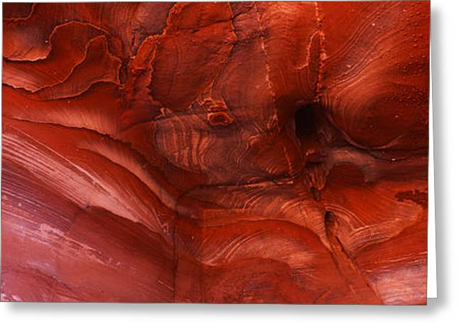 Details Of Sandstone Formation, Jordan Greeting Card by Panoramic Images