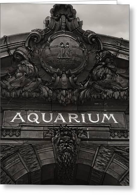 Belles Pyrography Greeting Cards - Detroit Aquarium Greeting Card by Ilze Lucero