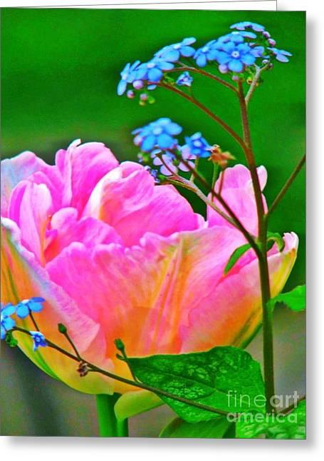 Hot Pink Custom Greeting Cards - Deux Fleur Greeting Card by Anne Sterling
