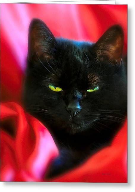 Devil In A Red Dress Greeting Card by Bob Orsillo