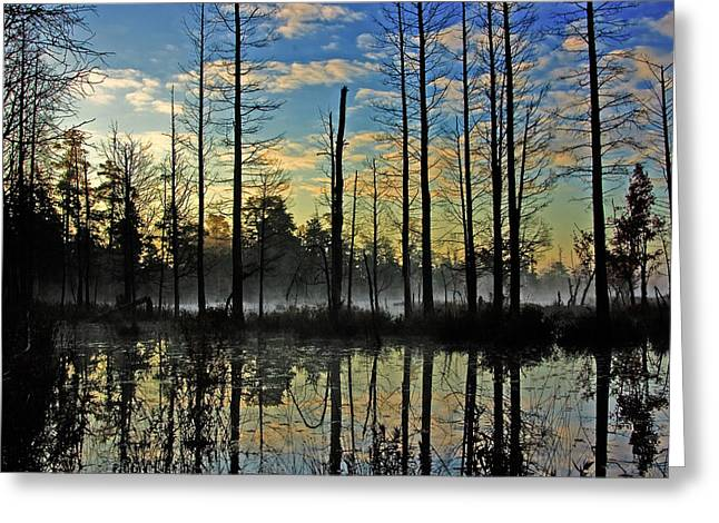 Devils Den In The Pine Barrens Greeting Card by Louis Dallara