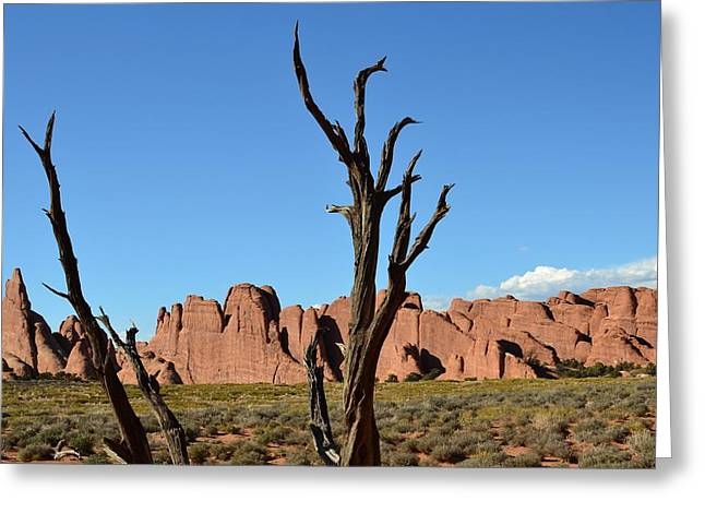 Gnarly Greeting Cards - Devils Garden Greeting Card by Joshua Jensen