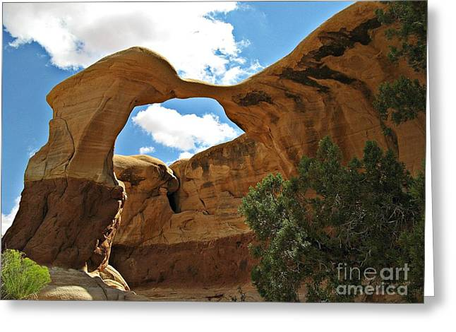 Holes In Sandstone Greeting Cards - Devils Garden - Metate Arch Greeting Card by Sheryl Young