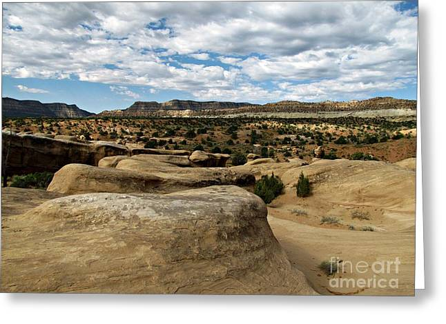 Holes In Sandstone Greeting Cards - Devils Garden - Sandstone and Straight Cliffs Greeting Card by Sheryl Young