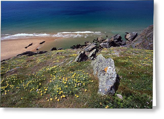 Beach Scenery Greeting Cards - Devon Coastline Greeting Card by Ollie Taylor