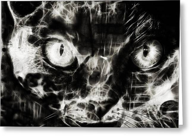 Cat Prints Greeting Cards - Devon Rex Cat- Black and White Greeting Card by Marlene Watson
