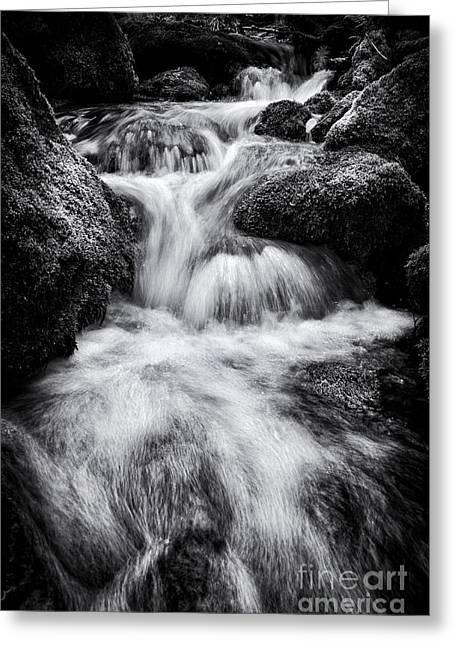 Rapids Greeting Cards - Devon River Monochrome Greeting Card by Tim Gainey