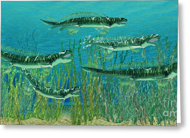 Fish Digital Art Greeting Cards - Devonian Orthacanthus Sharks Greeting Card by Corey Ford